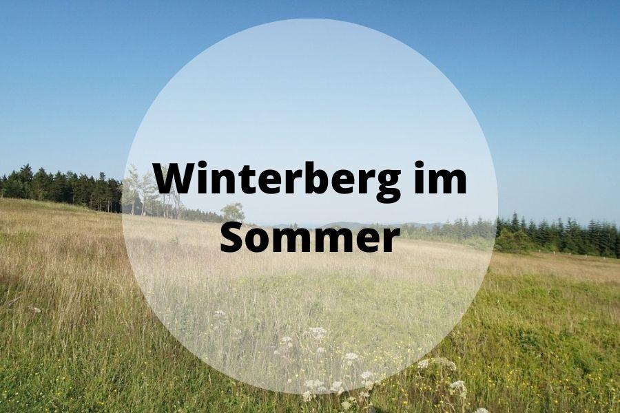 Winterberg im Sommer